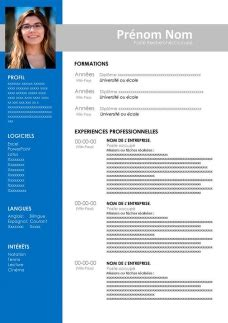 The CV in France Resume templates